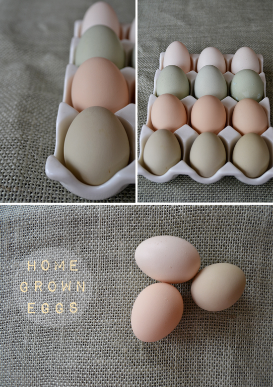 2go_homegrown_eggs